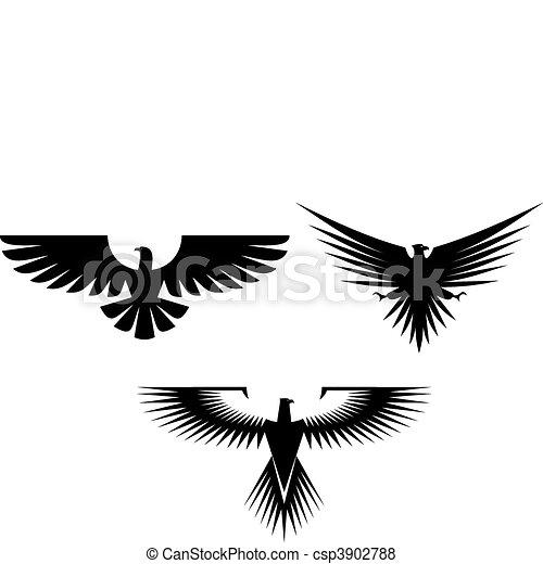 Eagle tattoos - csp3902788