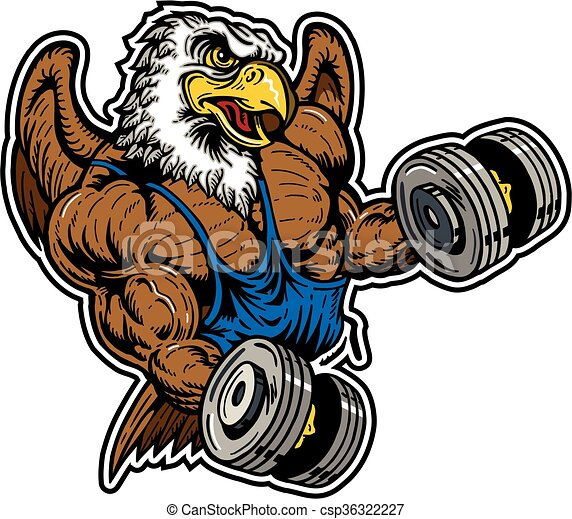 eagle weightlifting team design with muscular mascot for vector rh canstockphoto ca eagle football mascot clipart