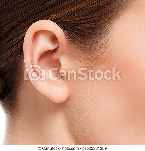 ear closeup - csp25381389