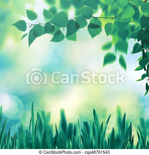 Early morning, abstract summer landscape with green foliage - csp48761543
