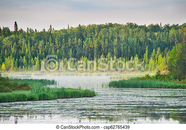 Early Morning Light on a Forest Lake - csp62765439