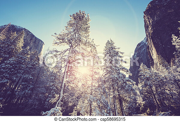 Early spring in Yosemite - csp58695315