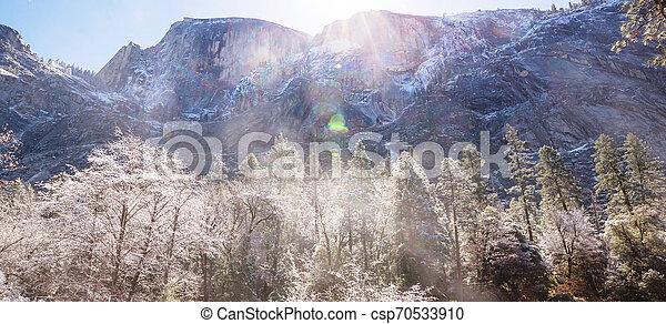 Early spring in Yosemite - csp70533910