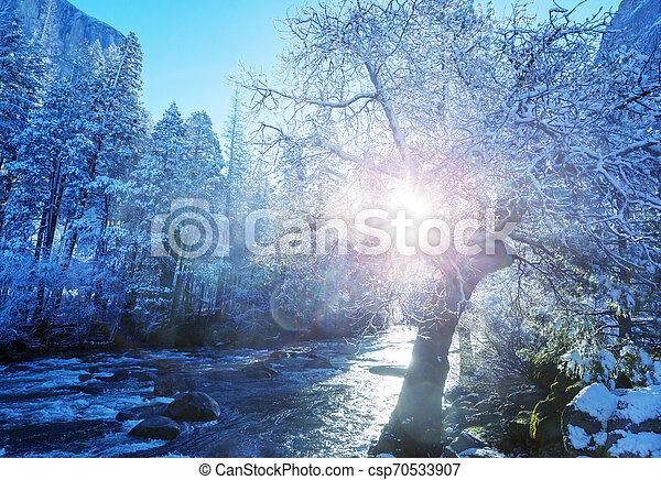 Early spring in Yosemite - csp70533907