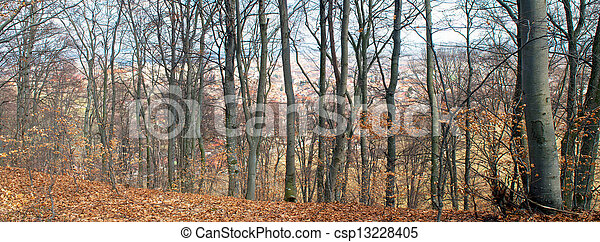 Early spring panorama - csp13228405