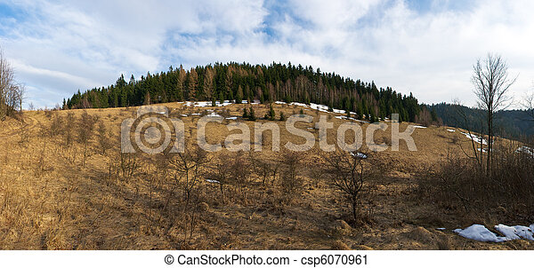 Early spring panorama with forest - csp6070961