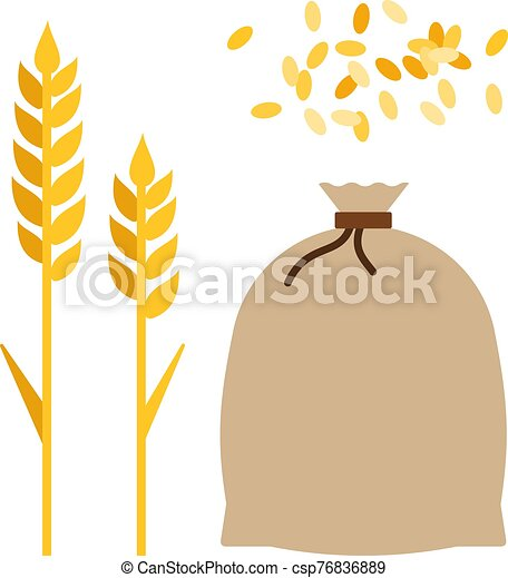 Ears of corn and a bag of wheat flat icon vector isolated - csp76836889