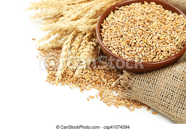 Ears of wheat and bowl of wheat grains on white background - csp41074394