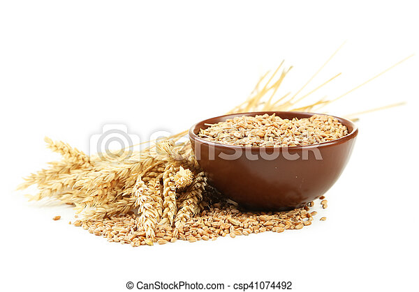 Ears of wheat and bowl of wheat grains isolated on white - csp41074492