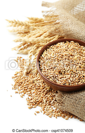 Ears of wheat and bowl of wheat grains on white background - csp41074509