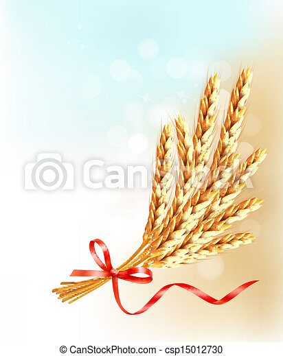 Ears of wheat  with red ribbon. Vector illustration.  - csp15012730