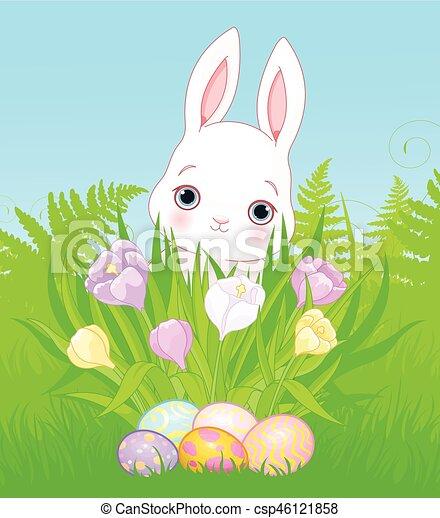 Easter Bunny - csp46121858