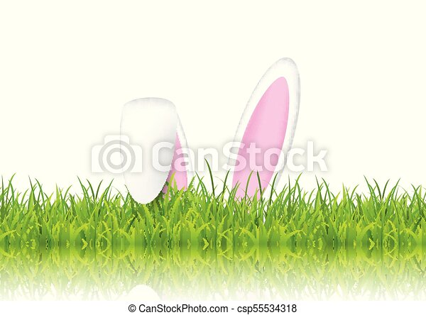 Easter bunny ears in grass - csp55534318