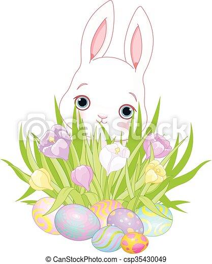 Easter Bunny - csp35430049