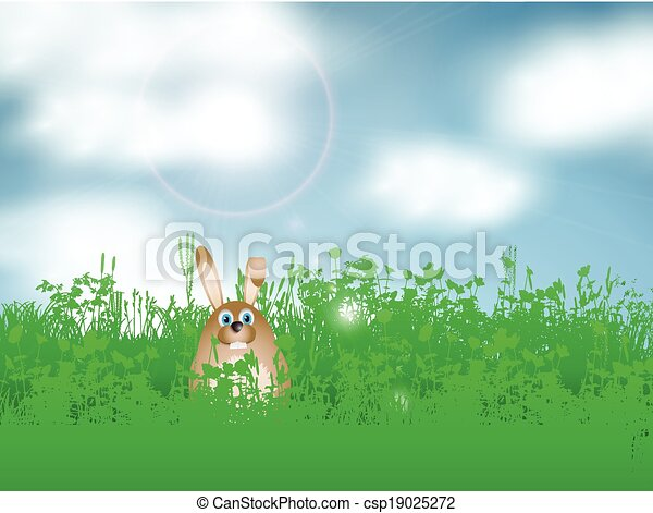 Easter bunny in grass - csp19025272