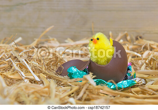 Easter chick hatching  - csp18742157