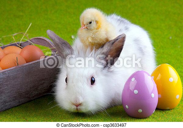 Easter concept - csp3633497