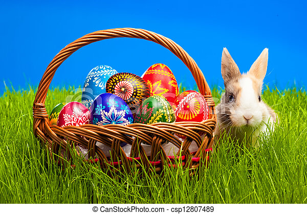 Easter egg and bunny in basket - csp12807489