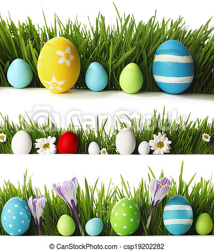 Easter eggs in grass - csp19202282