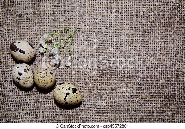 Easter eggs on a beautiful background - csp45572801