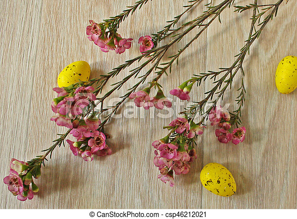 Easter eggs on wooden background - csp46212021