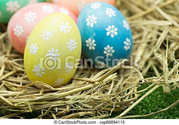 Easter eggs - csp66894115