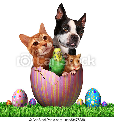 easter pets and pet spring holiday animals group for drawings rh canstockphoto com Pets at Home Clip Art Clip Art Group of Animals