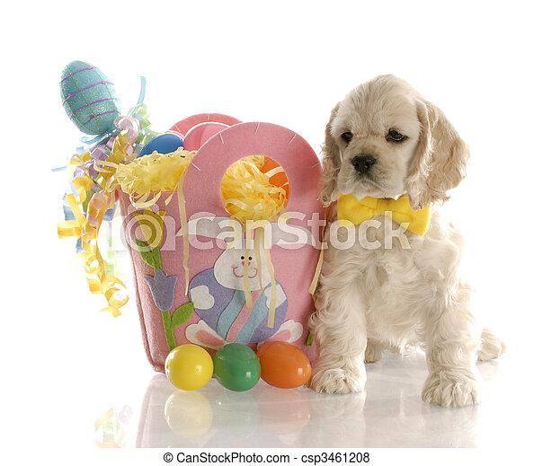 easter puppy - csp3461208