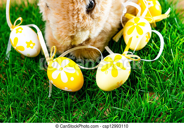 Easter rabbit on spring green grass - csp12993110