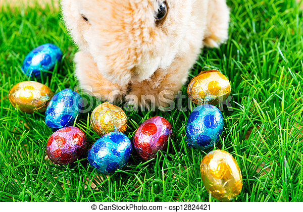 Easter rabbit on spring green grass - csp12824421