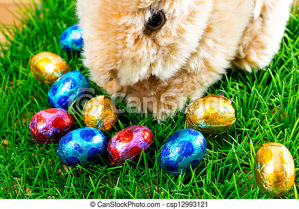Easter rabbit on spring green grass - csp12993121