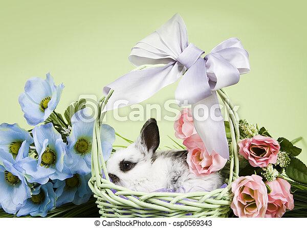 Easter Scene - csp0569343