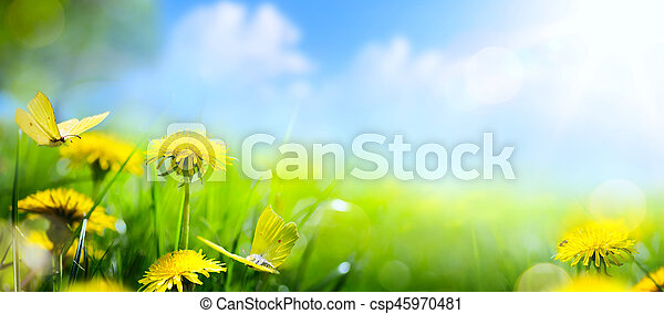 Easter spring flower background; fresh flower and yellow butterfly on green grass background - csp45970481