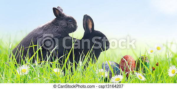 Easter - csp13164207