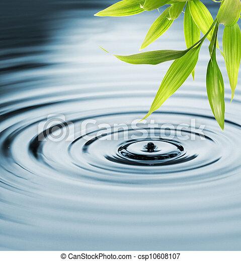 eau, frais, bambou, sur, feuilles - csp10608107