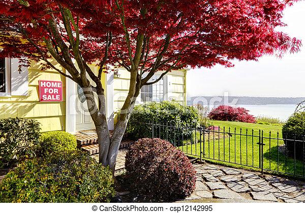 eau, jaune, sale., maple., petit, maison, rouges, vue - csp12142995