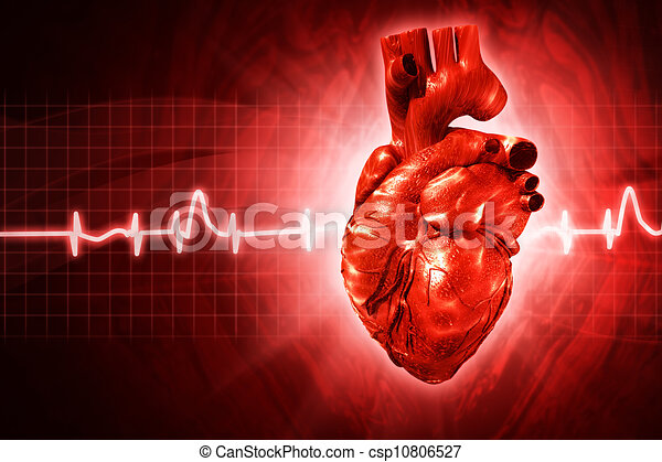 ECG abstract backgrounds with human 3D rendered heart - csp10806527