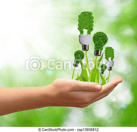 eco, bulbo, energia, mão - csp13606812