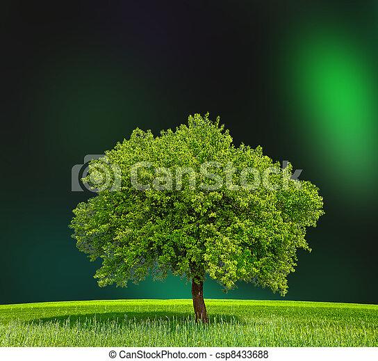 Eco Green Zone - csp8433688