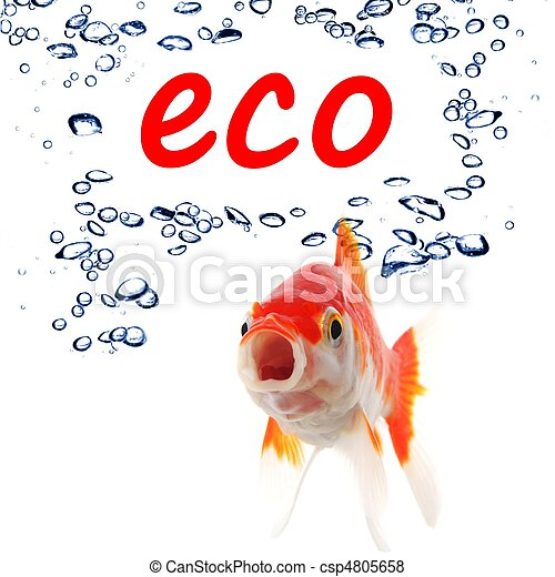 eco - csp4805658
