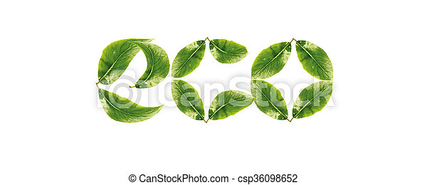 eco - csp36098652