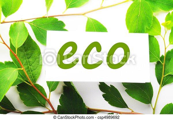 eco - csp4989692