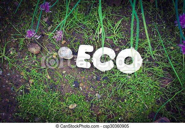 eco - csp30360905