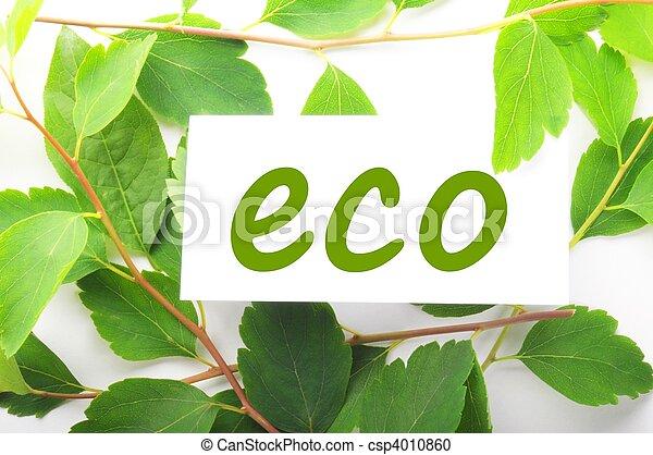 eco - csp4010860