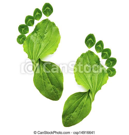 ecologia, arte, primavera, abstratos, pé, verde, impressão, símbolo - csp14916641