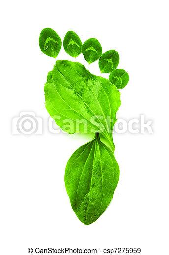 ecologia, arte, simbolo, piede, verde, stampa - csp7275959