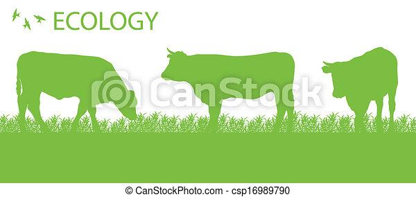 ecologia, organico, vettore, fondo, bestiame, agricoltura, negozio - csp16989790
