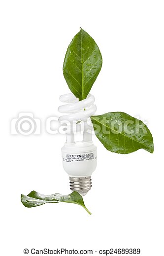 ecological concept light bulb - csp24689389