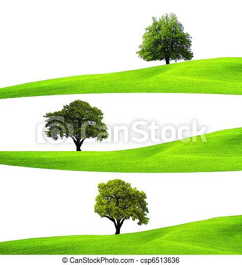 Ecology concept - csp6513636