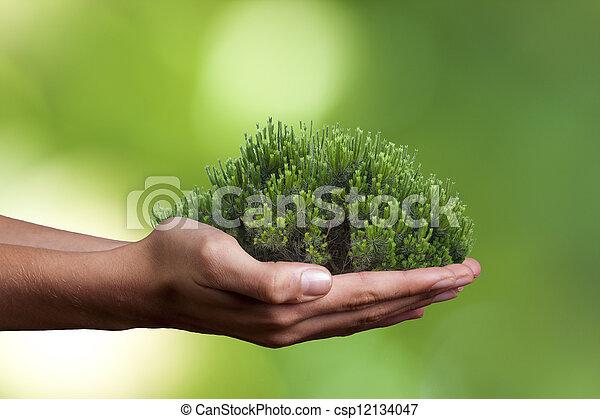 ecology concept - csp12134047